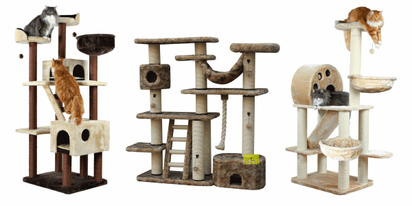 Everything for your pet: cat, dog, hamster, bird, horse...from tiierisch.de